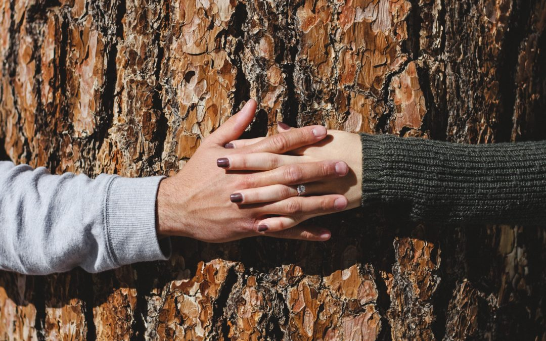 Attachment Styles in Relationships